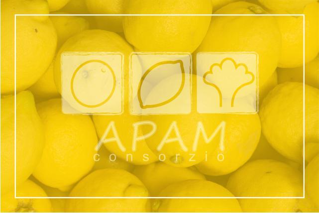 Limoni Siciliani Biologici